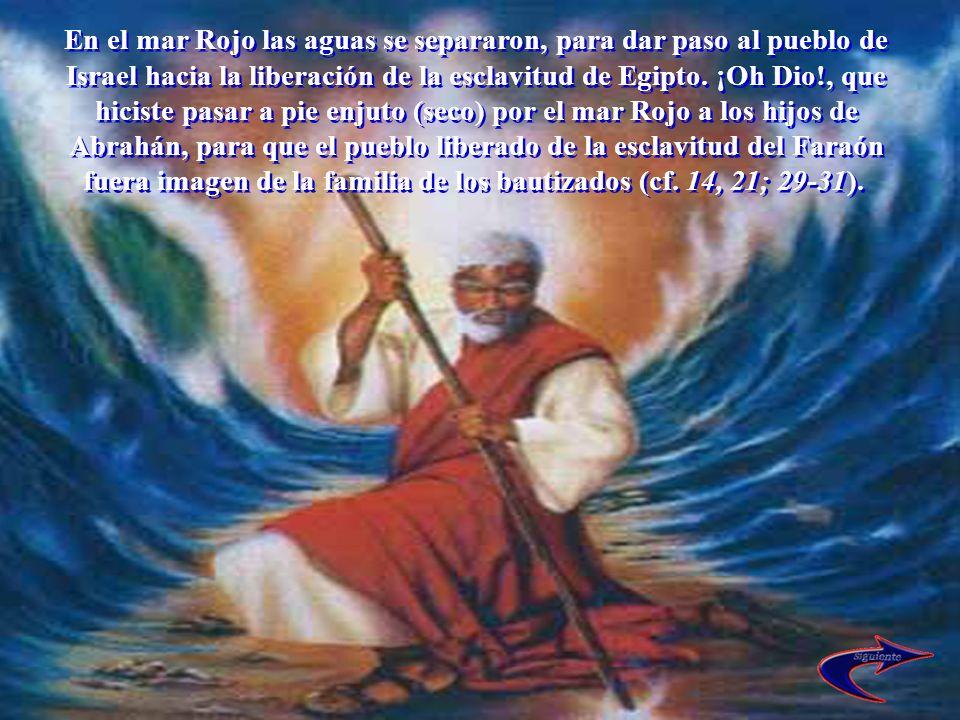 En el mar Rojo las aguas se separaron, para dar paso al pueblo de Israel hacia la liberación de la esclavitud de Egipto.