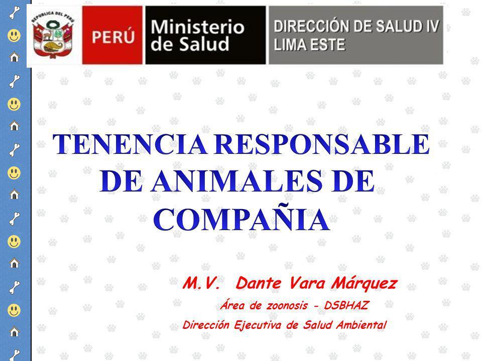 DE ANIMALES DE COMPAÑIA