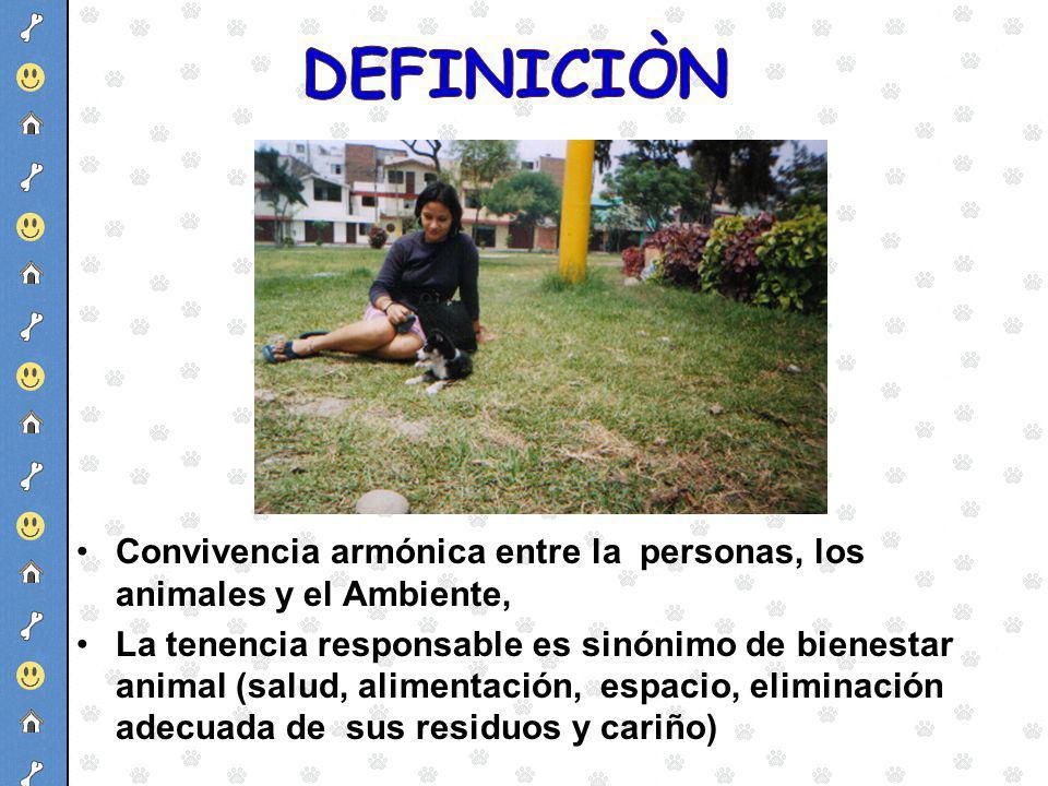 DEFINICIÒN Convivencia armónica entre la personas, los animales y el Ambiente,