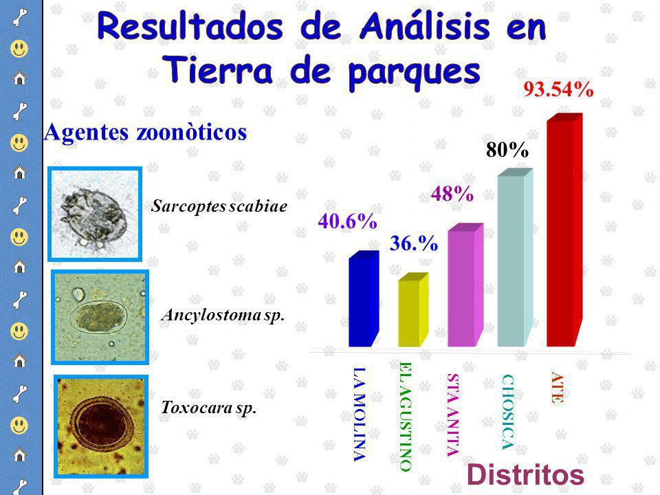 Resultados de Análisis en Tierra de parques