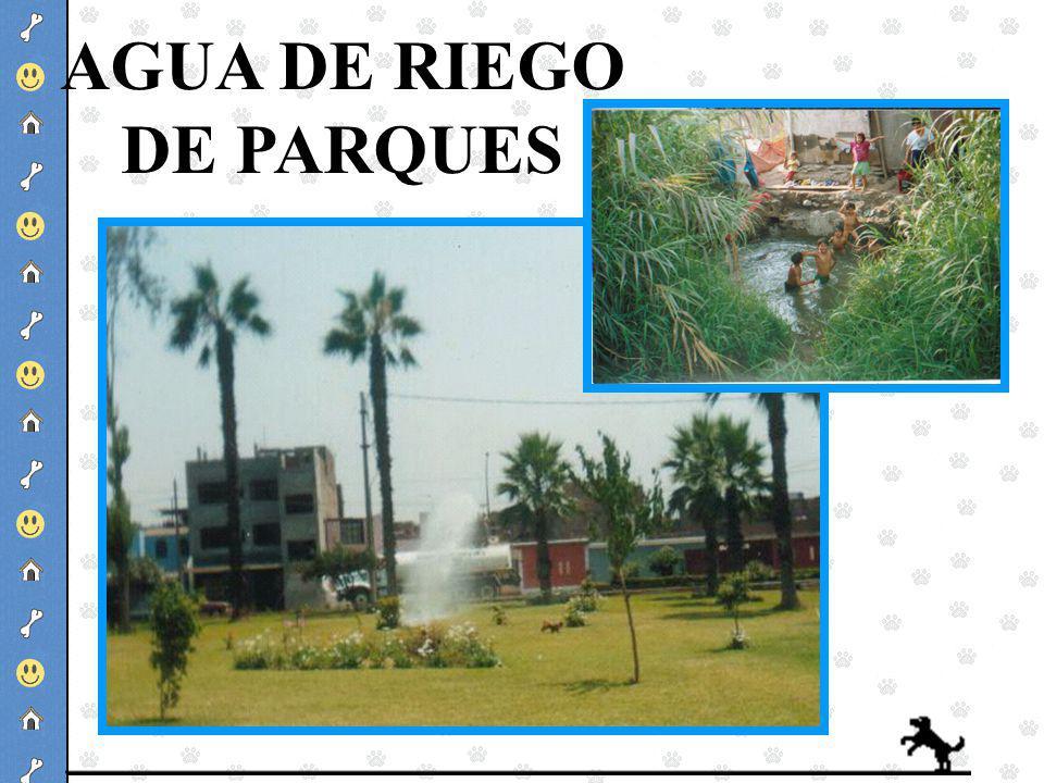 AGUA DE RIEGO DE PARQUES