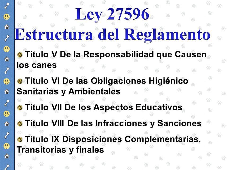 Estructura del Reglamento