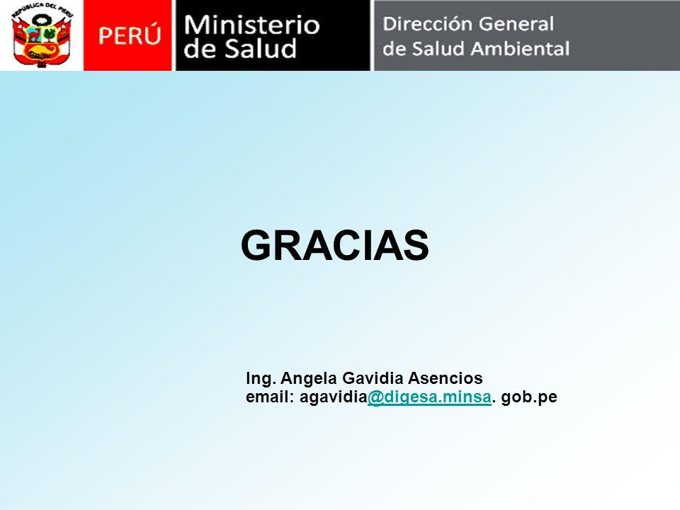 GRACIAS Ing. Angela Gavidia Asencios