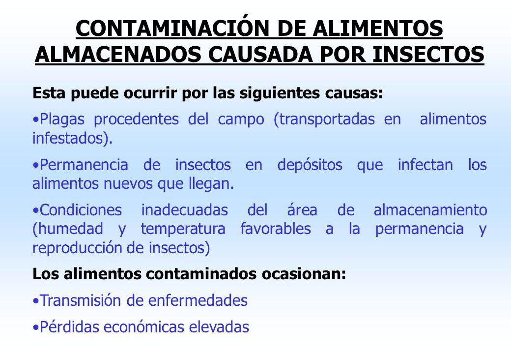 CONTAMINACIÓN DE ALIMENTOS ALMACENADOS CAUSADA POR INSECTOS