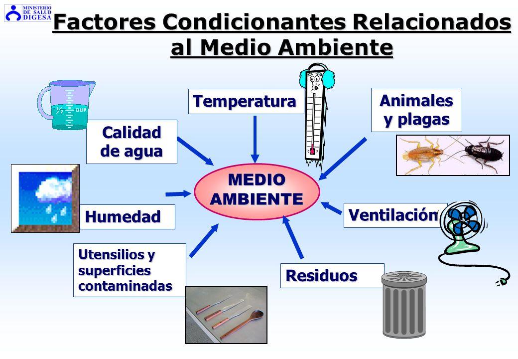 Factores Condicionantes Relacionados al Medio Ambiente
