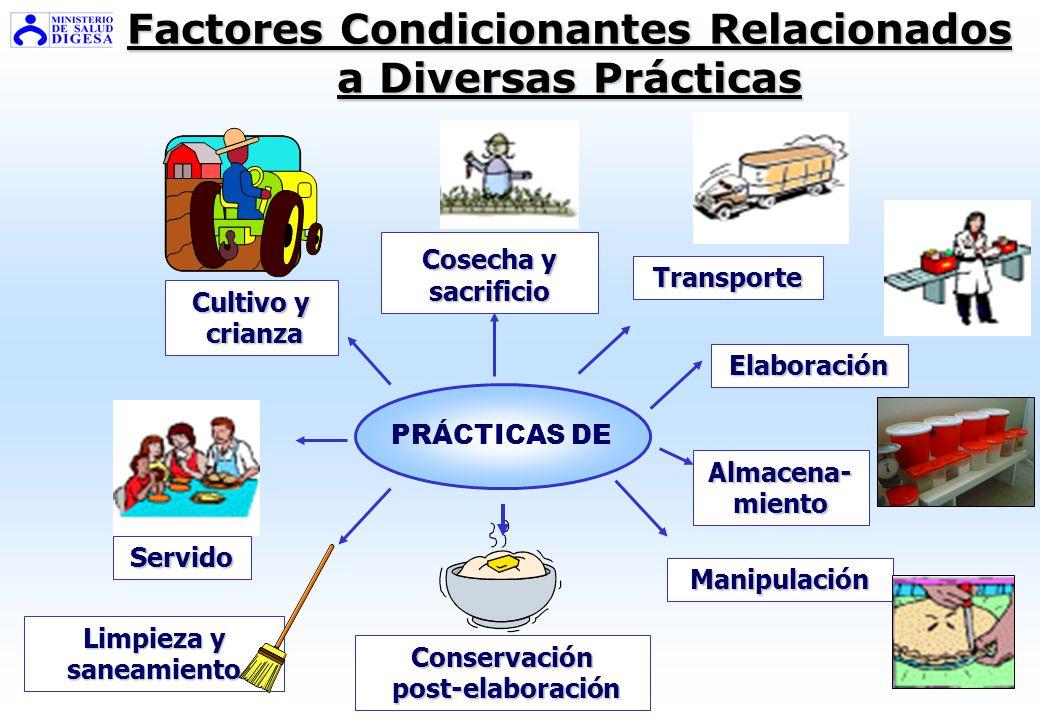 Factores Condicionantes Relacionados a Diversas Prácticas