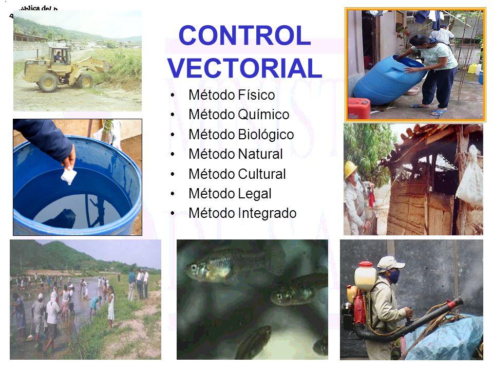CONTROL VECTORIAL Método Físico Método Químico Método Biológico