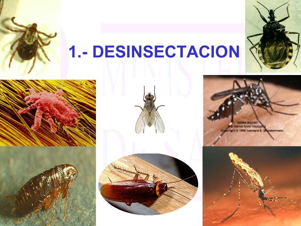 1.- DESINSECTACION
