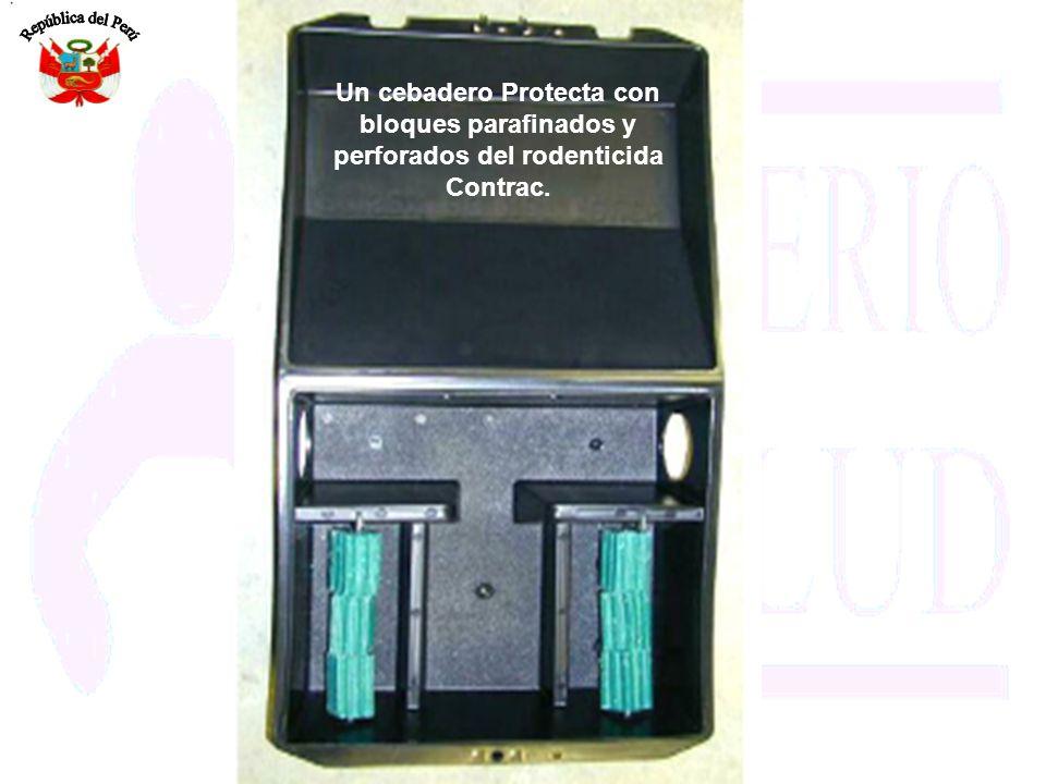 Un cebadero Protecta con bloques parafinados y perforados del rodenticida Contrac.