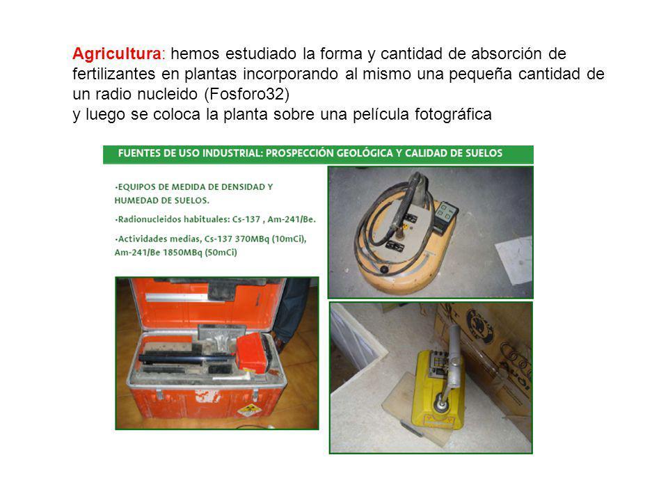 Agricultura: hemos estudiado la forma y cantidad de absorción de fertilizantes en plantas incorporando al mismo una pequeña cantidad de un radio nucleido (Fosforo32)