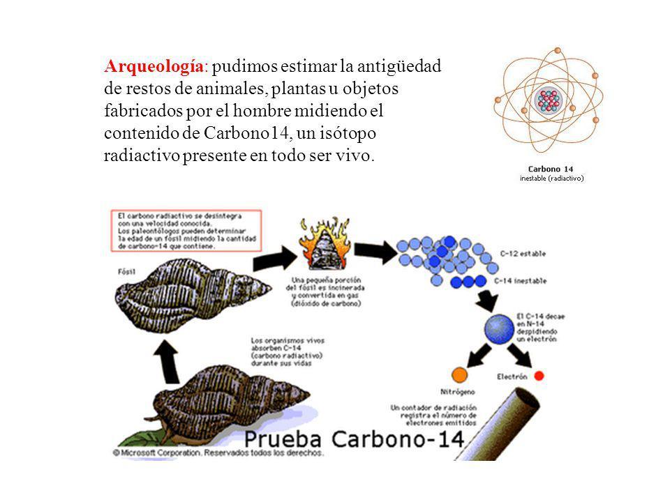 Arqueología: pudimos estimar la antigüedad de restos de animales, plantas u objetos fabricados por el hombre midiendo el contenido de Carbono14, un isótopo radiactivo presente en todo ser vivo.