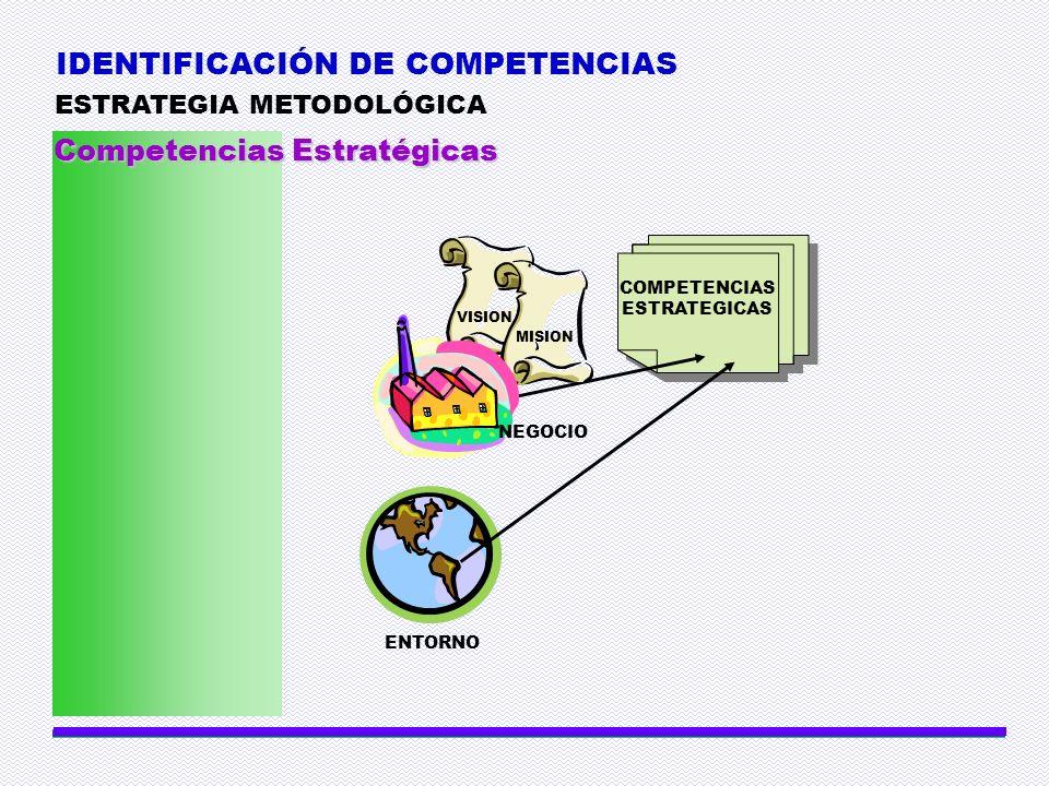 IDENTIFICACIÓN DE COMPETENCIAS