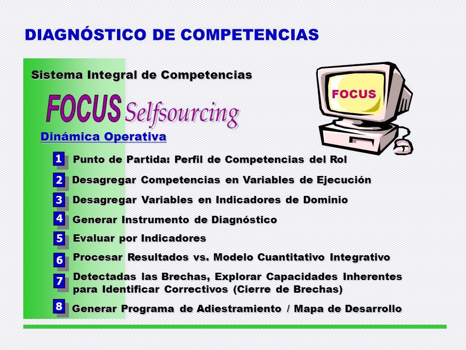 FOCUS Selfsourcing DIAGNÓSTICO DE COMPETENCIAS