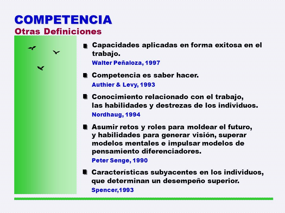 COMPETENCIA Otras Definiciones