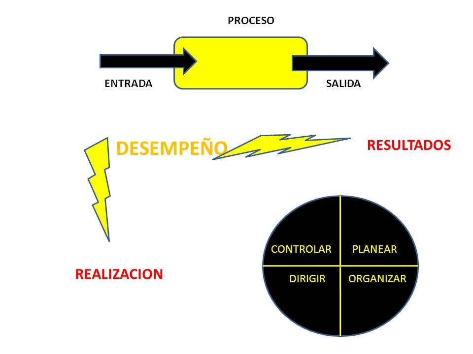 DESEMPEÑO RESULTADOS REALIZACION PROCESO ENTRADA SALIDA CONTROLAR