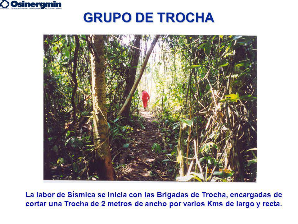GRUPO DE TROCHA