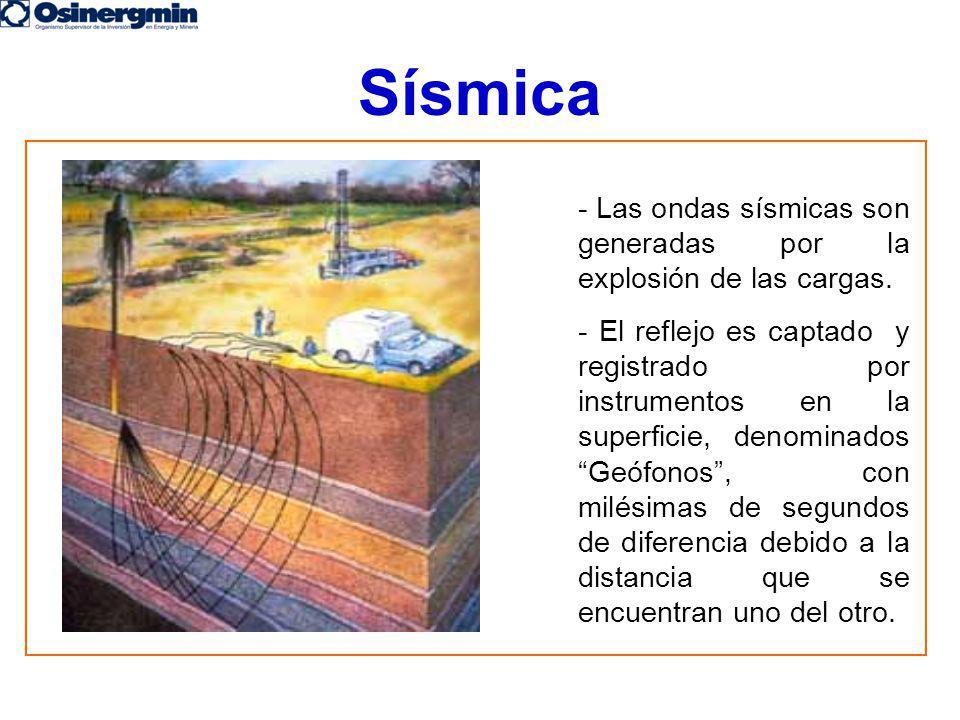 Sísmica - Las ondas sísmicas son generadas por la explosión de las cargas.
