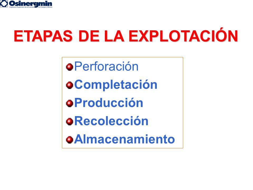 ETAPAS DE LA EXPLOTACIÓN