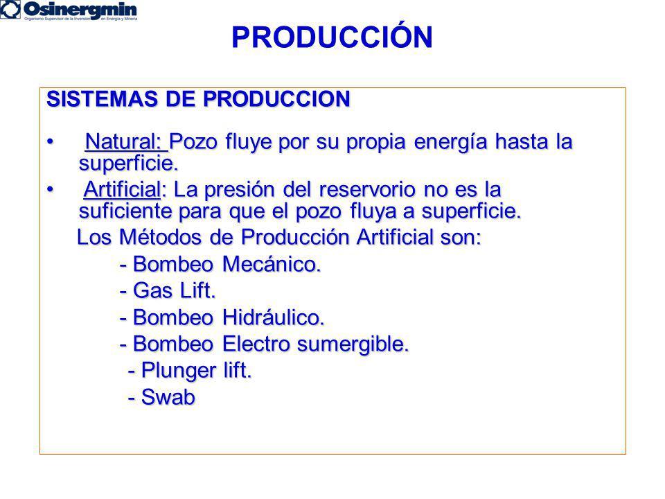 PRODUCCIÓN SISTEMAS DE PRODUCCION