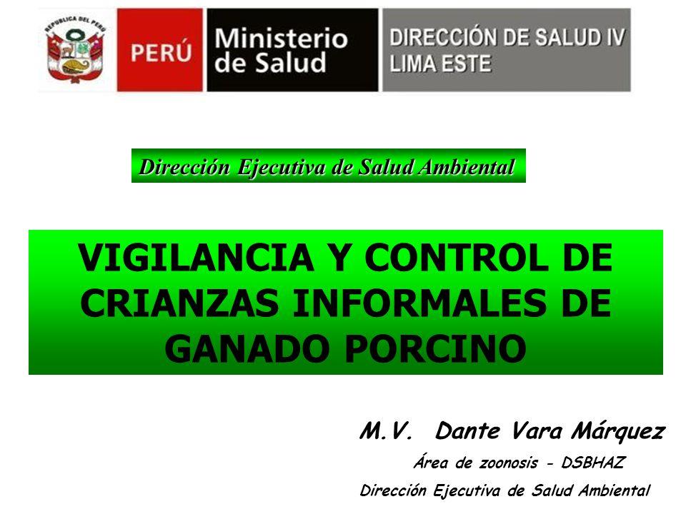 VIGILANCIA Y CONTROL DE CRIANZAS INFORMALES DE GANADO PORCINO
