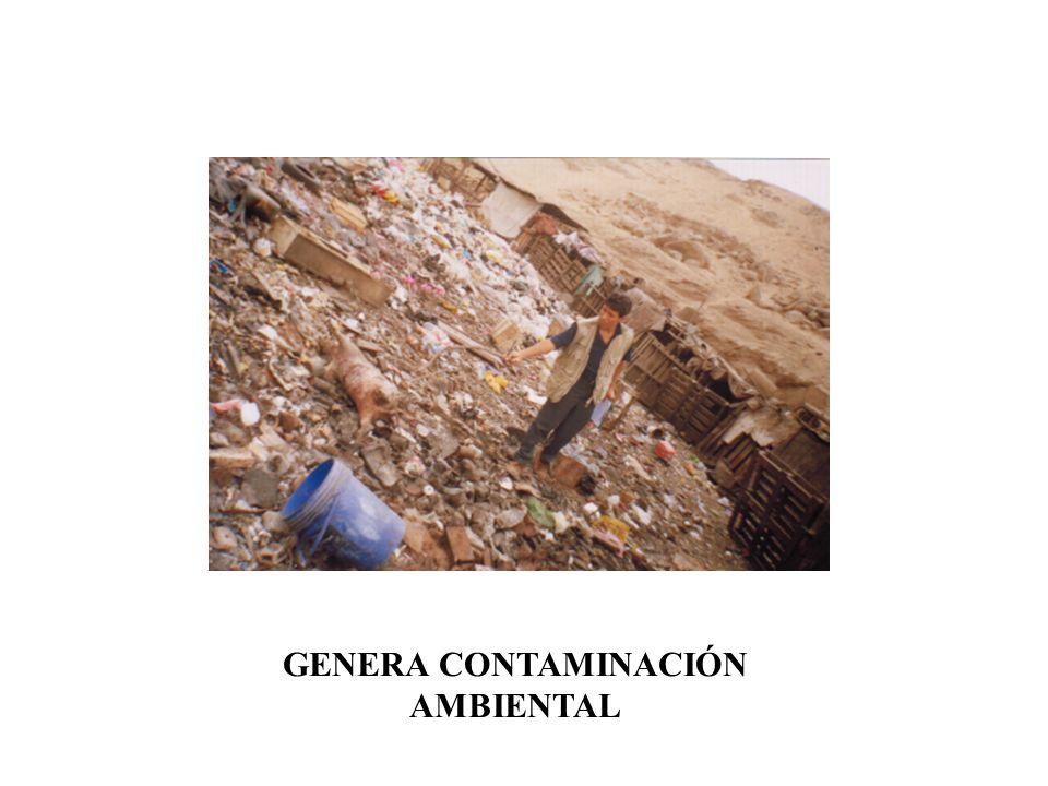 GENERA CONTAMINACIÓN AMBIENTAL
