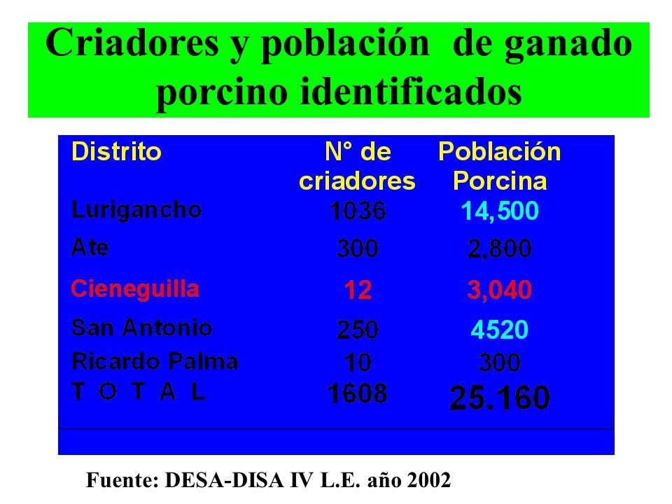 Criadores y población de ganado porcino identificados