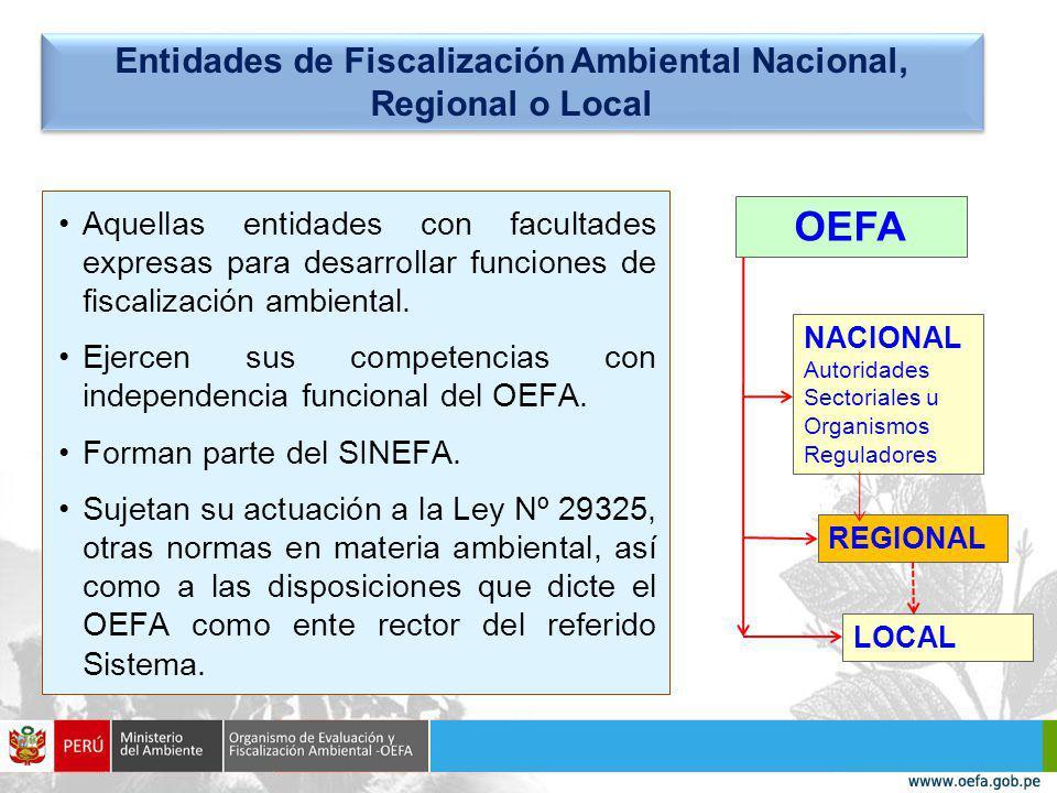 Entidades de Fiscalización Ambiental Nacional, Regional o Local