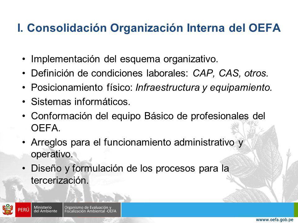 I. Consolidación Organización Interna del OEFA