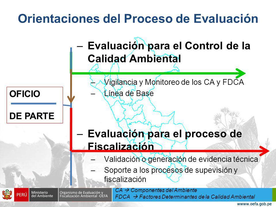 Orientaciones del Proceso de Evaluación