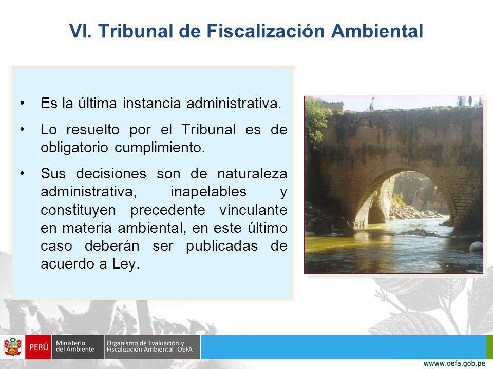 VI. Tribunal de Fiscalización Ambiental