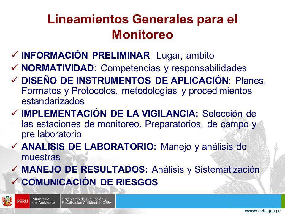Lineamientos Generales para el Monitoreo