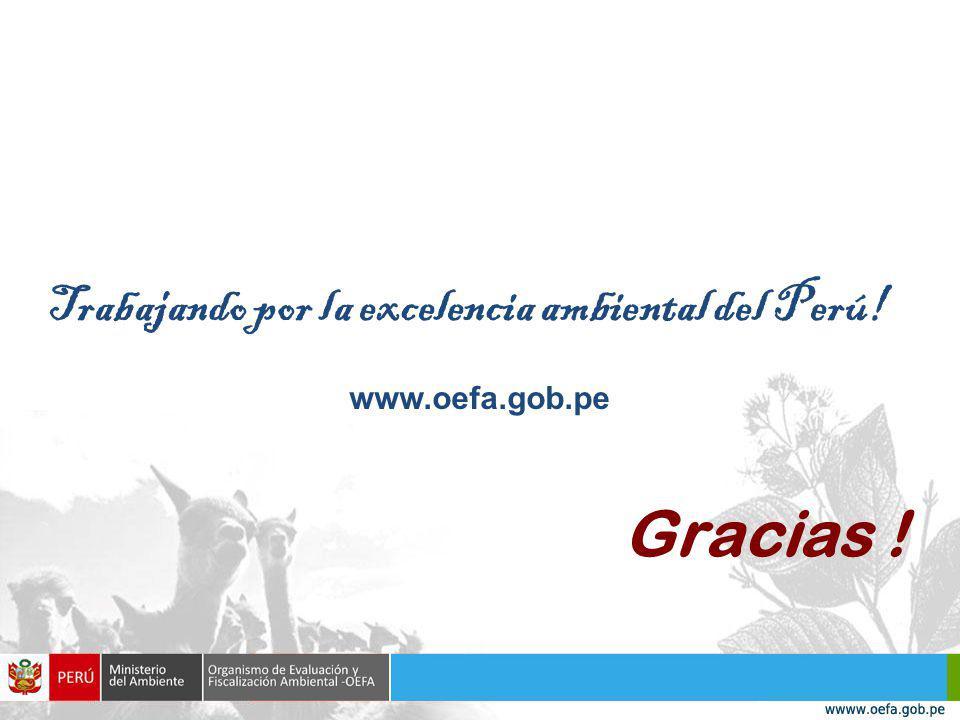 Gracias ! Trabajando por la excelencia ambiental del Perú!