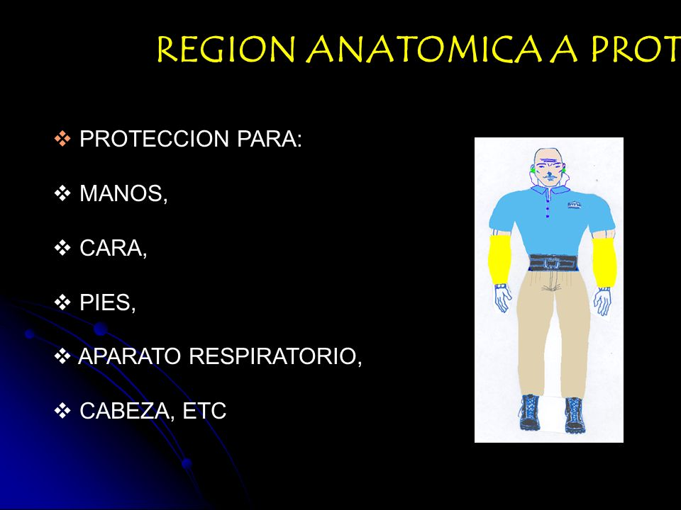 REGION ANATOMICA A PROTEGER: