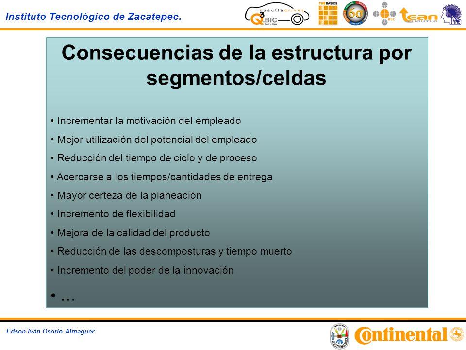 Consecuencias de la estructura por segmentos/celdas