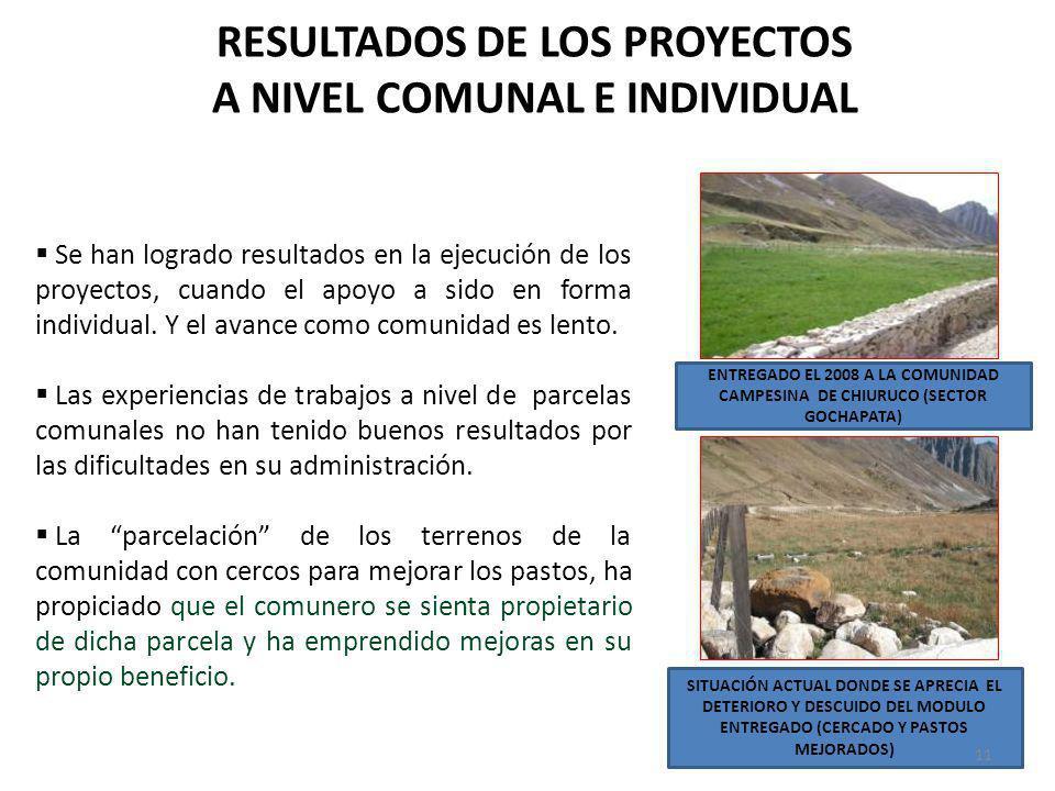 RESULTADOS DE LOS PROYECTOS A NIVEL COMUNAL E INDIVIDUAL