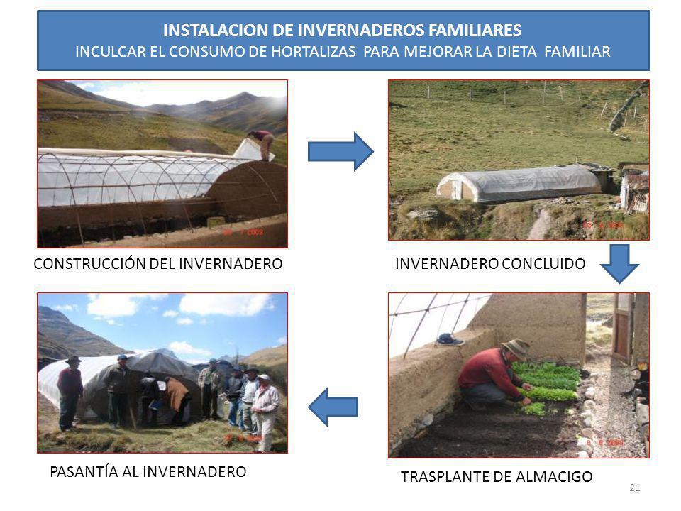 INSTALACION DE INVERNADEROS FAMILIARES