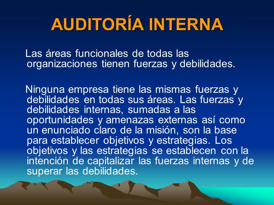 AUDITORÍA INTERNA Las áreas funcionales de todas las organizaciones tienen fuerzas y debilidades.