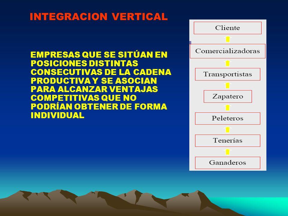 INTEGRACION VERTICAL