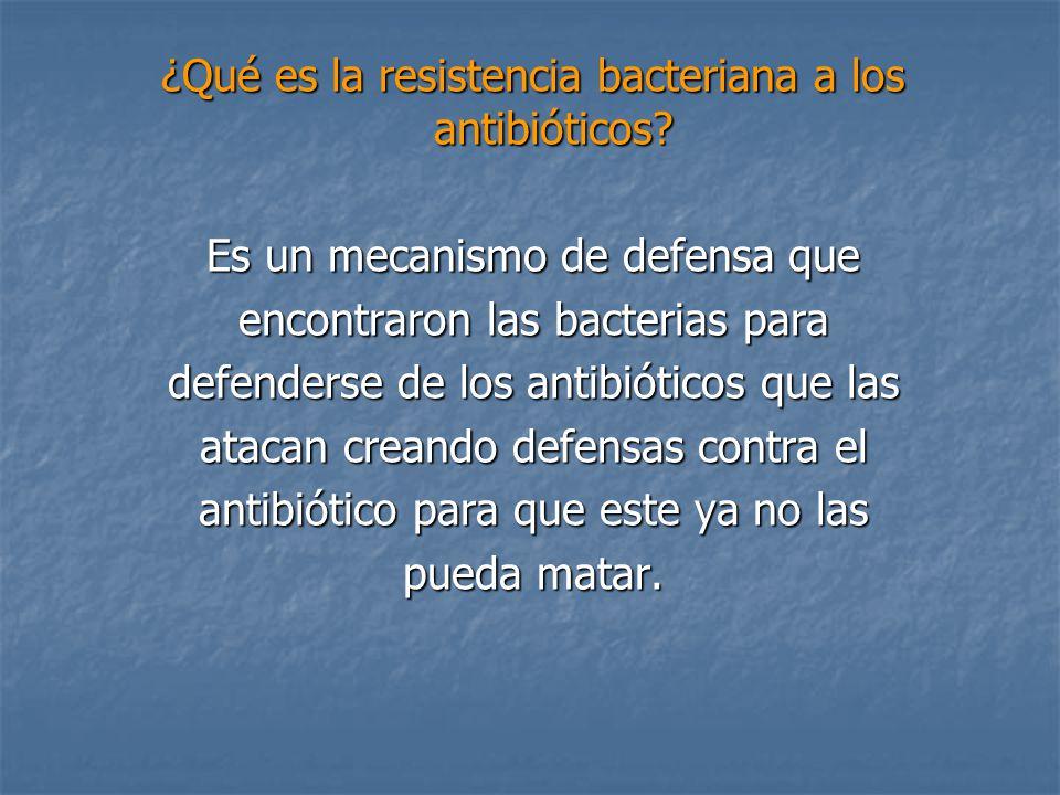 ¿Qué es la resistencia bacteriana a los antibióticos