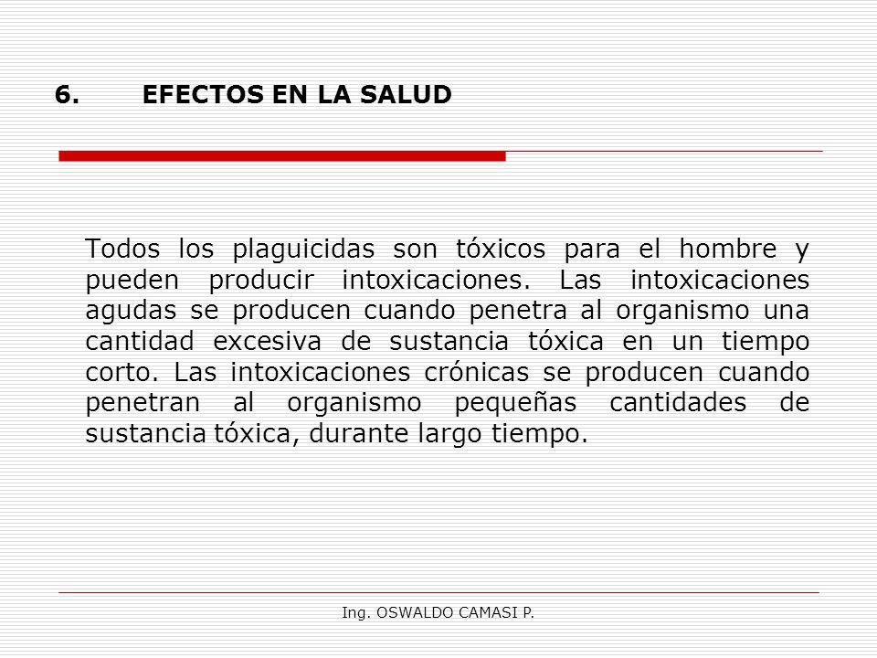 6. EFECTOS EN LA SALUD