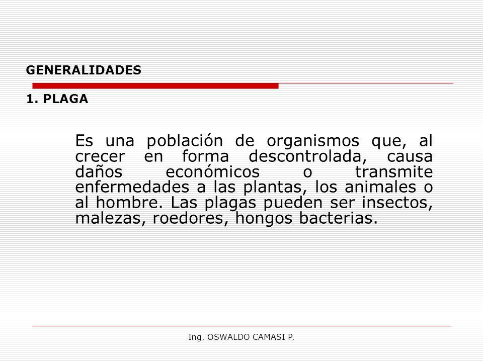 GENERALIDADES 1. PLAGA