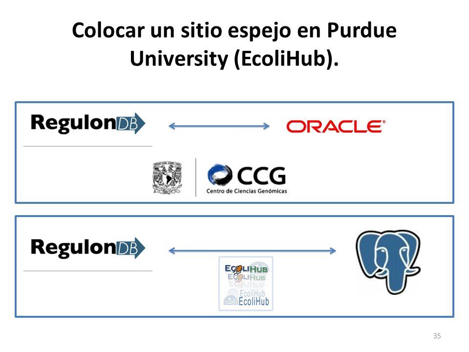 Colocar un sitio espejo en Purdue University (EcoliHub).
