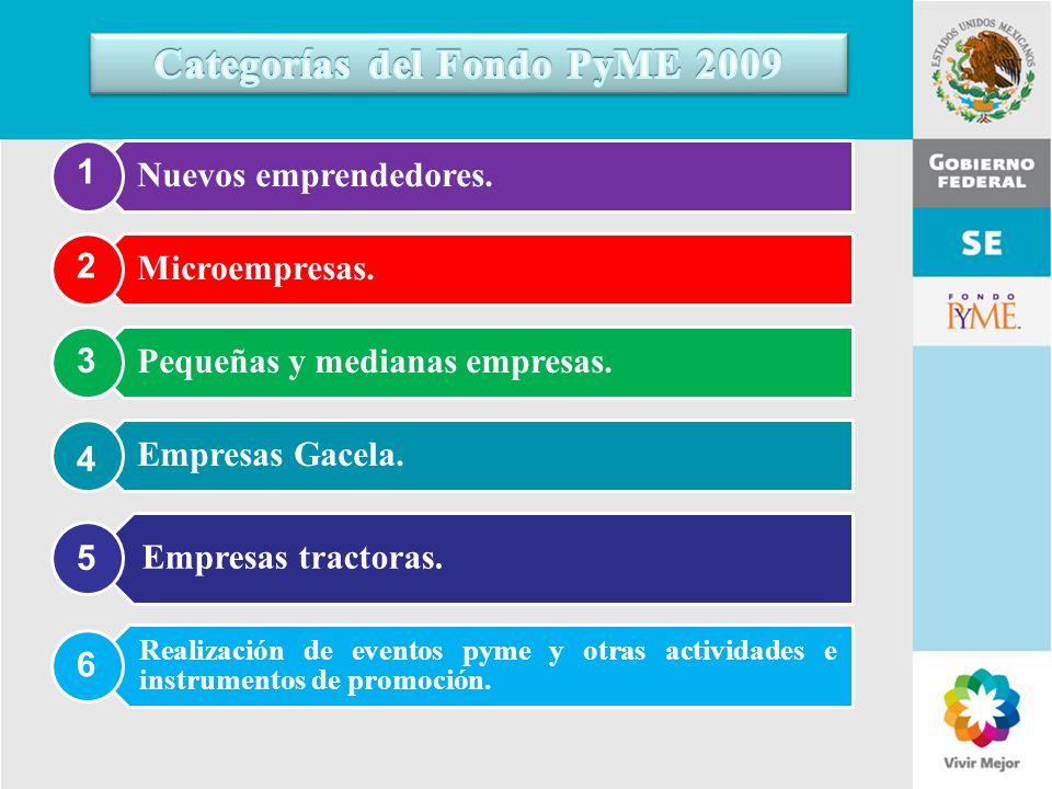 Categorías del Fondo PyME 2009