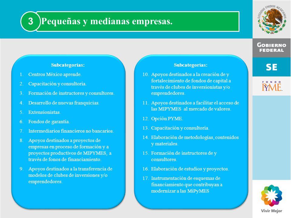 Pequeñas y medianas empresas. 3
