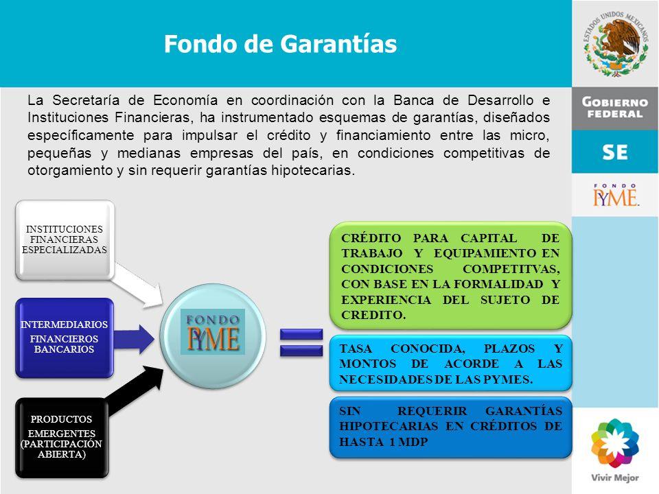 Fondo de Garantías