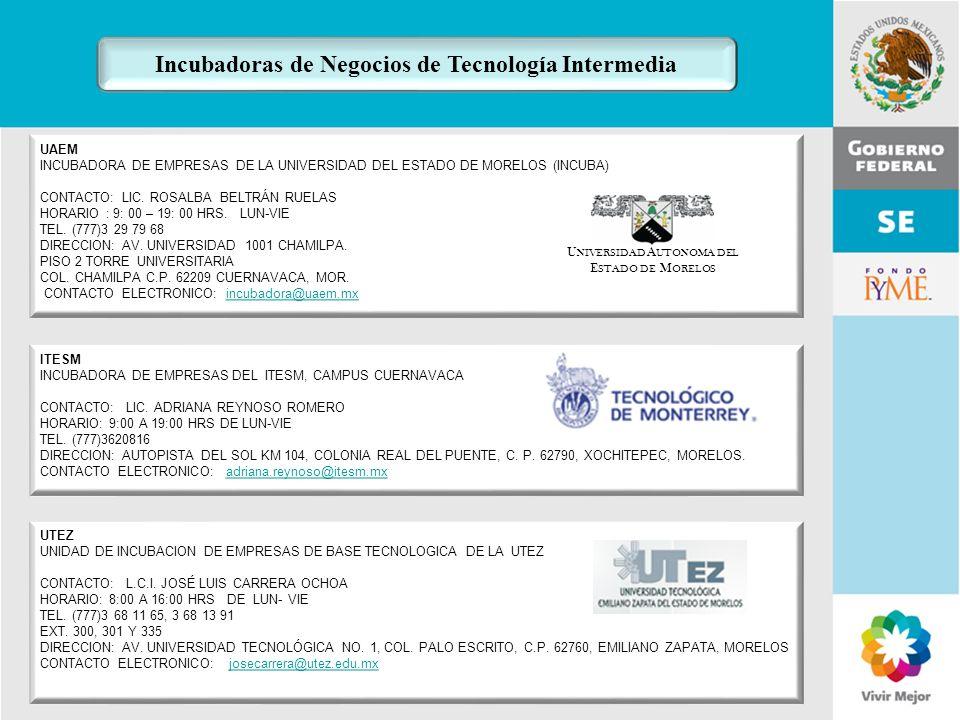 Incubadoras de Negocios de Tecnología Intermedia