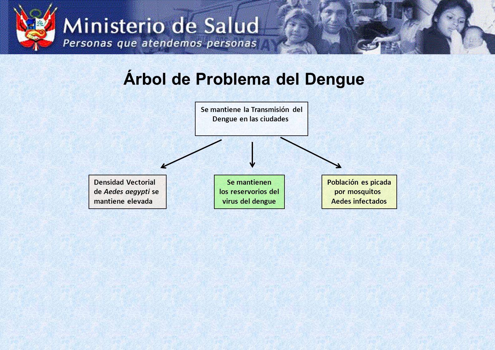 Árbol de Problema del Dengue