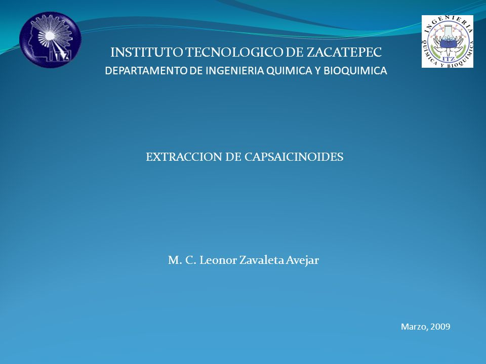 INSTITUTO TECNOLOGICO DE ZACATEPEC