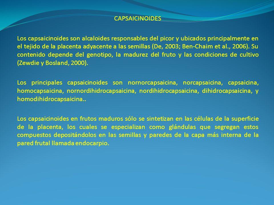 CAPSAICINOIDES