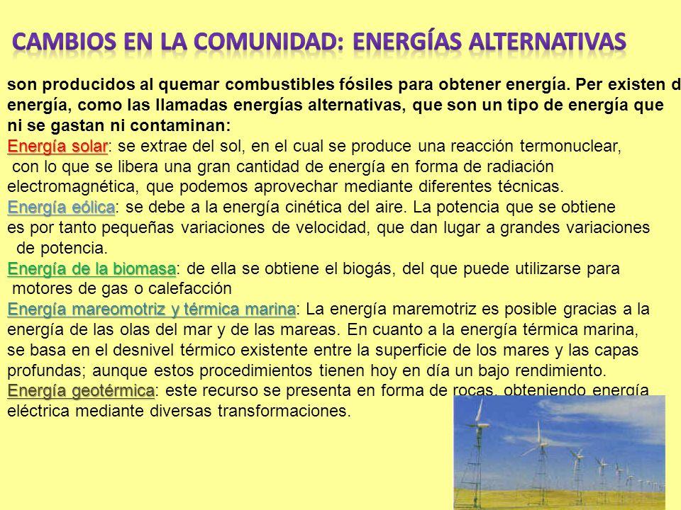 Cambios en la comunidad: energías alternativas